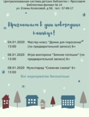 В дни новогодних каникул